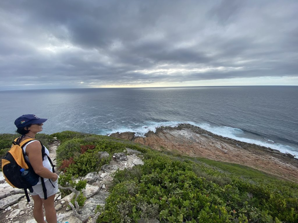 The Point - half way round Robberg Nature Reserve. Plettenberg Bay.